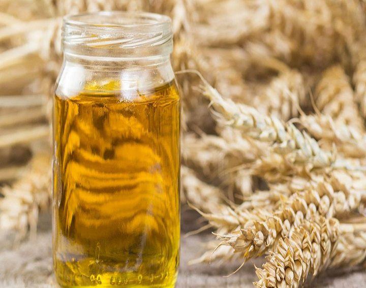 اهم استخدامات زيت جنين القمح