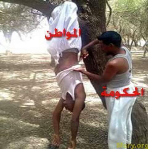 صوره مضحكه وصور ضحك مصرية