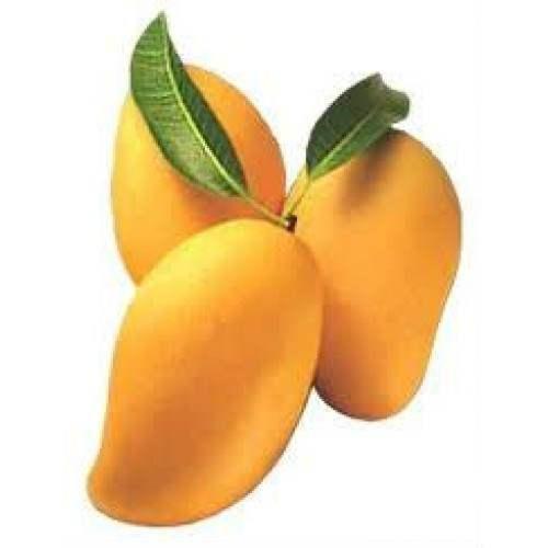 حل لغز كلمة السر هي فاكهة مكونة من 5 حروف