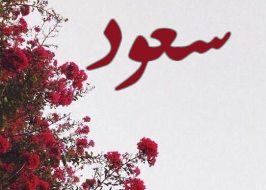 معنى اسم سعود