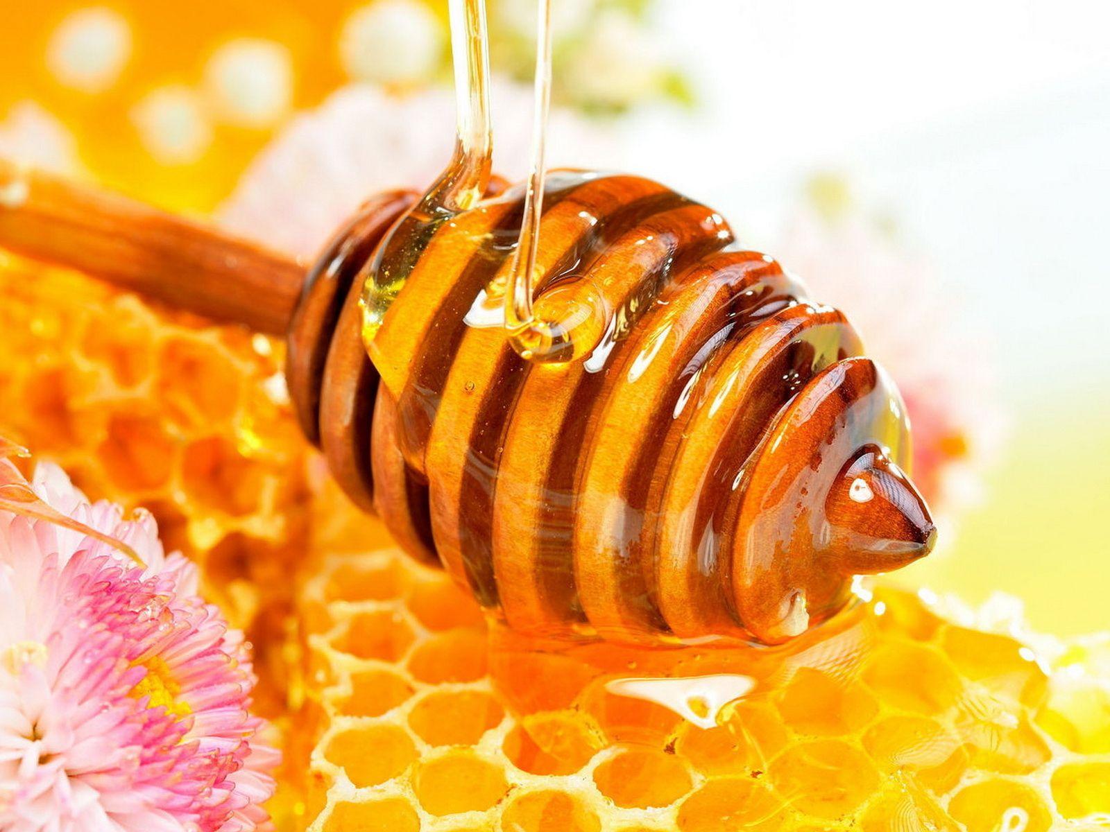 حلم أكل العسل