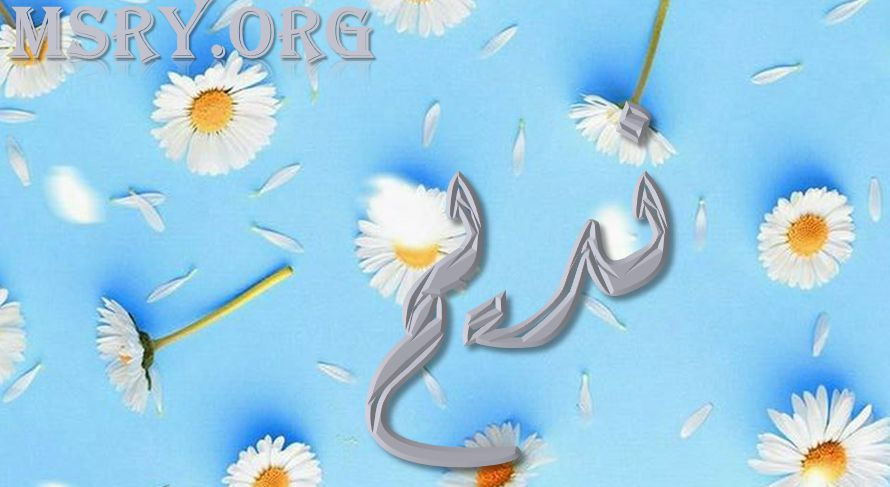 صور عن اسم نديم