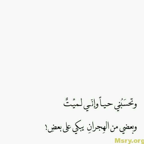 words-in-love-love-words-53